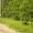 Участок ИЖС в деревне Красногор Переславский район #1296823